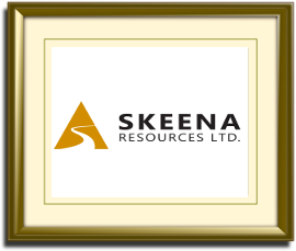 Skeena Resources Ltd.